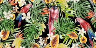 Free Beautiful Watercolor Tropical Pattern With Parrots And Flowers Of Hibiscus And Strelitzia. Tropical Fruits Papaya And Bananas. Royalty Free Stock Photos - 123889618
