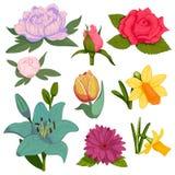 Beautiful watercolor vector handmade flower botanical bloom painting hand made summer flowers branch petal decoration. Floristics bouquet nature design stock illustration
