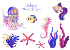 Beautiful watercolor vibrant set of underwater life Royalty Free Stock Photo