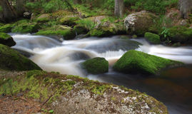 Beautiful waterfall. Stream in the forest with stones covered by moss stock photo