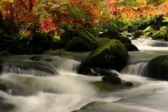The beautiful waterfall Stock Photos
