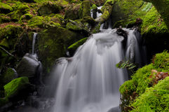 The beautiful waterfall Stock Photography