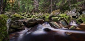 Beautiful Waterfall royalty free stock photo