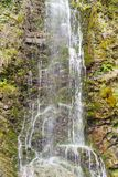 Beautiful waterfall amid vegetation. A beautiful waterfall on the background of vegetation in the forest Stock Photography