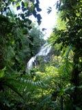 A beautiful waterfall  of Australian coast Royalty Free Stock Photography