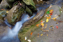 Beautiful waterfall in autumn Royalty Free Stock Images