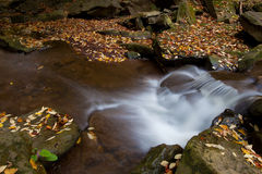 Beautiful waterfall in autumn Stock Photography