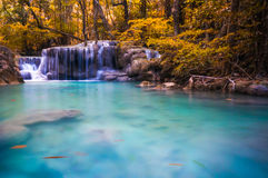 Beautiful Waterfall in autumn Royalty Free Stock Photography