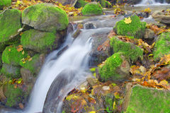 Beautiful waterfall in autumn forest Stock Image
