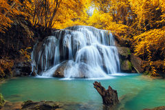 Beautiful waterfall in autumn Stock Image