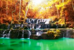 Beautiful waterfall in autumn, rocks and stones in autumn Royalty Free Stock Images