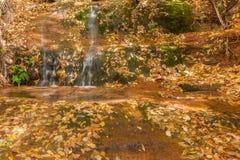 Beautiful Waterfall in Autumn Stock Photo