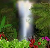 Beautiful on the waterfall background Royalty Free Stock Photos