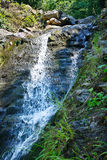 Beautiful waterfall breaks off cliff in the forest Stock Images