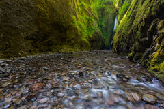 Beautiful waterfall and canyon in Oneonta Gorge trail, Oregon. Stock Photo