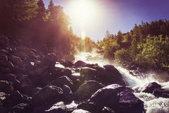 Beautiful waterfall cascads on river in forest in mountains. water motion. beautiful scenery landscape of river in woods under. Summer sun light royalty free stock image