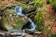 Beautiful waterfall comes out of a huge rock in the forest royalty free stock photo
