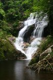 Beautiful waterfall in deep forest. Stock Photos