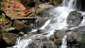 Beautiful waterfall details stock footage