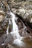 Beautiful waterfall falling Stock Photography