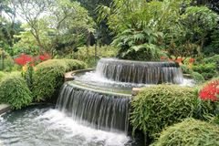 Beautiful Waterfall feature in Singapore Botanic Garden. A circular two level waterfall feature surrounded by lush vegetation and flowers in Singapore Botanic stock photography