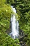 Trafalgar Falls, Dominica stock photography