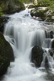 The beautiful waterfall in forest Stock Photography