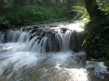 The beautiful waterfall in forest Royalty Free Stock Image
