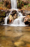 Beautiful waterfall in the forest Stock Photos