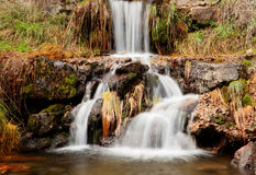 Beautiful waterfall in the forest Stock Image