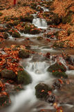 Beautiful waterfall in forest, autumn landscape. Royalty Free Stock Photography