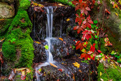 Beautiful waterfall in forest, autumn landscape Royalty Free Stock Image