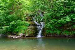 Beautiful waterfall in a forest Royalty Free Stock Photos