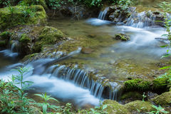 Beautiful waterfall in forest, close up Stock Image