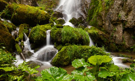 Beautiful waterfall in the forest with green background Royalty Free Stock Photography