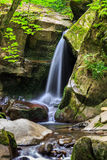 Beautiful waterfall in the forest royalty free stock images