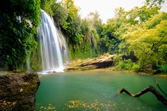 Beautiful waterfall in the forest Royalty Free Stock Photos