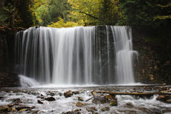 Beautiful waterfall in forest stream Stock Photo