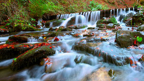 Beautiful waterfall in forest at sunset Stock Images