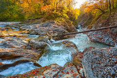 Beautiful waterfall in forest at sunset. Autumn landscape, fallen leaves Royalty Free Stock Photos