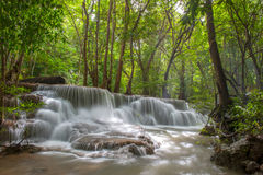 Beautiful waterfall in a forest. Waterfall in forest of Thailand Royalty Free Stock Image