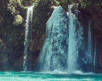 Beautiful waterfall in the forest tropical zone. Royalty Free Stock Images