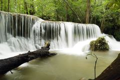 Beautiful waterfall in green forest Royalty Free Stock Image