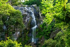 Beautiful waterfall in the green forest. Great waterfall in Thailand stock images