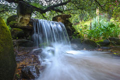 Beautiful waterfall in the green forest Stock Photo