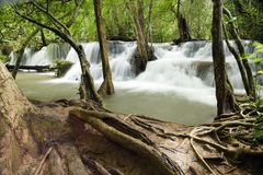 Beautiful waterfall in green forest Stock Images