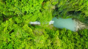 Beautiful waterfall in green forest, top view. Tropical Inambakan Falls in mountain jungle, Philippines, Cebu. Waterfall. In the tropical forest. Pure water in stock video