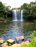 Beautiful waterfall with greenery in New Zealand. Royalty Free Stock Photo