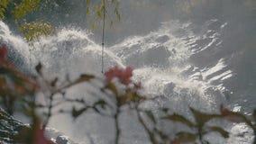 Beautiful waterfall among the greenery stock video