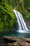 Beautiful waterfall on Guadeloupe island Royalty Free Stock Photos